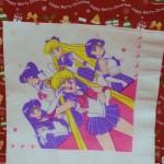 Sailor Clean-Up!